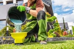 best natural fertilizer for vegetable garden