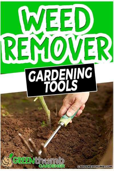 weed remover gardening tools