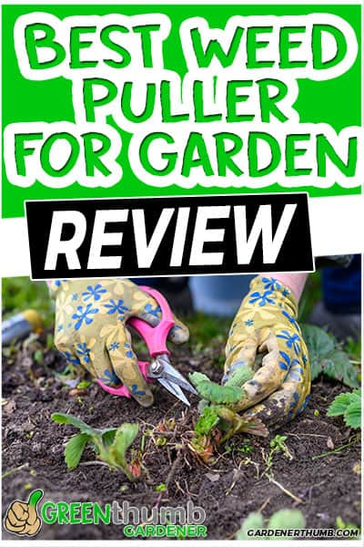 best weed puller for garden review