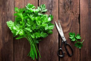 how to prune parsley